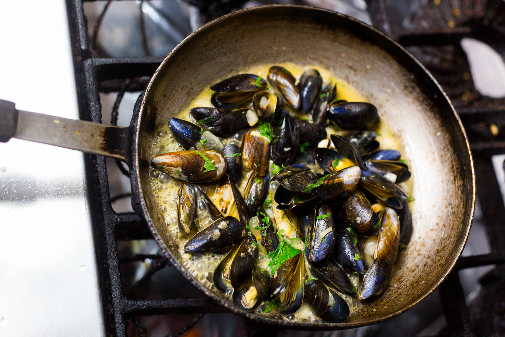 Mussels in a skillet | Personal Brand Photography
